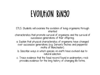 Evolution Bingo