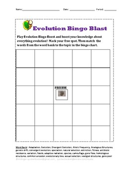 Evolution Bingo Blast