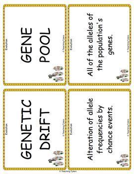 Evolution Biology Vocabulary Cards