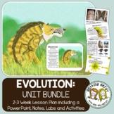Evolution, Natural Selection, Adaptation - PowerPoint & Handouts Bundle