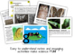 Evolution - PowerPoint & Handouts Bundle