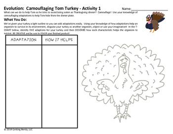 Adaptations Thanksgiving Activity for Evolution