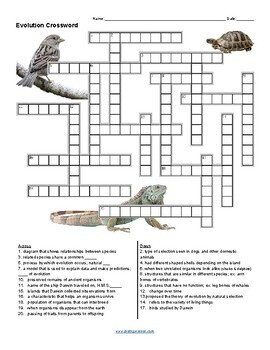 Evolution Crossword (KEY)