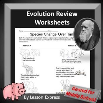 Evolution, Darwin and Natural Selection Review Worksheets (9 worksheets)