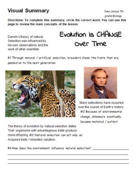 Evolution, Darwin and Natural Selection Review Worksheets (9 worksheets)