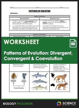 Evolution - Divergent Evolution, Convergent Evolution, and Coevolution