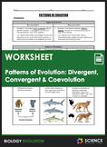 Worksheet - Evolution - Divergent Convergent & Coevolution - Distance Learning
