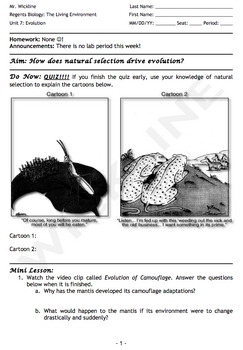 Evolution Driven by Natural Selection