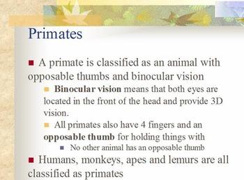Evolution - Evidence of Evolution w/ Worksheet