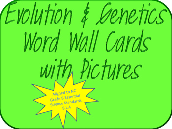 Evolution & Genetics Visual Word Wall(NC Grade 8 ESS 8.L.4)