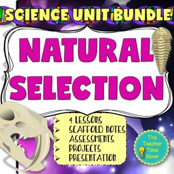 Evolution & Geologic Time Scale Unit Bundle- 5E Complete Lesson Plans