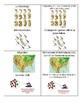 Evolution Go Fish Cards