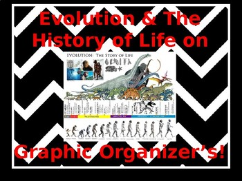 Evolution & History Of life on Earth Graphic Organizer's