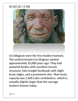 Evolution: Hominid Cards