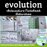 Evolution Interactive Notebook