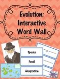 Evolution: Interactive Word Wall