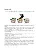 Evolution Jigsaw LS3-1