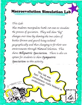 Natural Selection Teaching Resources Teachers Pay Teachers