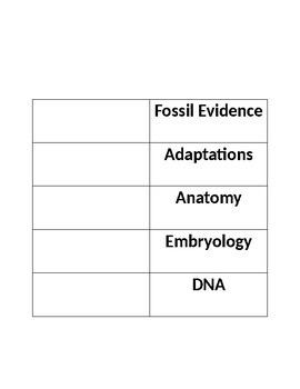 Evolution Match the Evidence