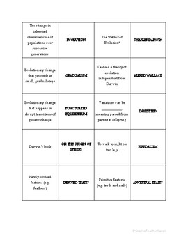 Biology: Evolution Matching Review Game