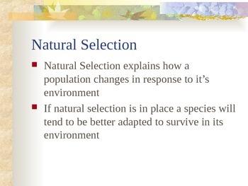 Evolution - Natural Selection
