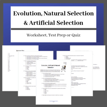 Darwin's Natural Selection Worksheet as well  likewise  moreover Natural Selection Worksheet Printable     topsimages together with Natural Selection and Peppered Moths in addition Natural Selection Worksheet Natural Selection Worksheet Clroom as well Kids  evolution worksheet  Mechanisms Of Evolution Worksheet as well Vocabulary Worksheets   Natural Selection And Adaptation Worksheet besides Evolution by Natural Selection Worksheet Answers   Briefencounters besides 59 Best Bio Unit 4  Evolution and Natural Selection images   Science also Natural Selection – Beak Shapes Investigation Inheritance besides Natural Selection Worksheet Natural Selection Worksheet Clroom moreover Scientific Evidence That Supports Evolution   Video   Lesson as well  in addition Quiz   Worksheet   Types of Natural Selection   Study additionally Darwin's Theory of Evolution Worksheet   Chapter 15 Darwin's Theory. on evolution by natural selection worksheet