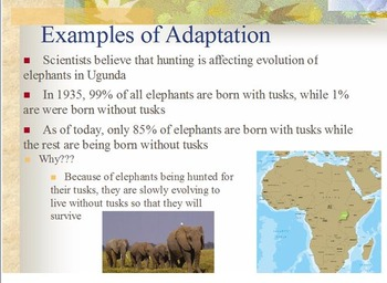 Evolution - Natural Selection w/ Worksheet