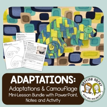 Adaptations, Mimicry, and Camouflage in Evolution