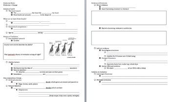 Evolution Notes Bundle - NGSS