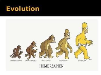 Evolution Powerpoint Slideshow