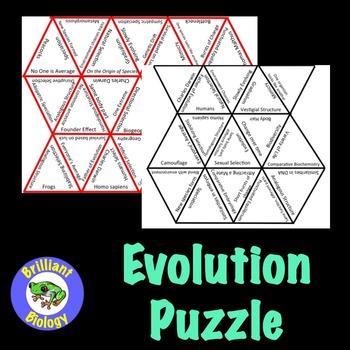 Evolution Puzzle