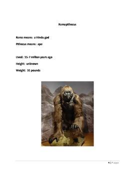 Evolution: Ramapithecus