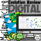 Evolution Review Digital Hidden Mystery Picture   Distance