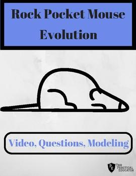 Evolution: Rock Pocket Mouse