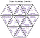 Evolution Tarsia Puzzle