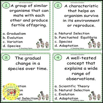 Evolution Task Cards