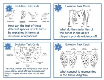 Evolution Task Cards for Middle and High School