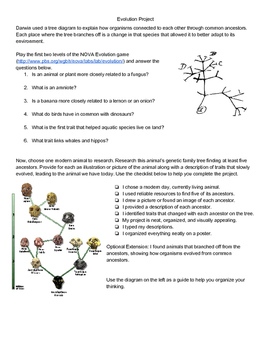 Evolution Tree Project