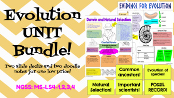 Evolution UNIT BUNDLE- Slide Decks and Doodle Notes! NGSS!