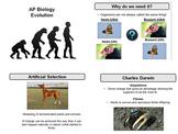 Evolution Unit - AP Biology or Honors Biology