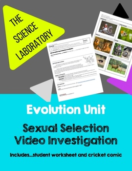 Evolution Unit: Sexual Selection Video Investigation