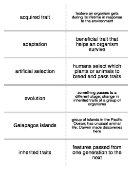 Evolution Vocabulary Flash Cards for Middle School Science