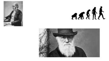 Evolution Vocabulary (Visual Support)