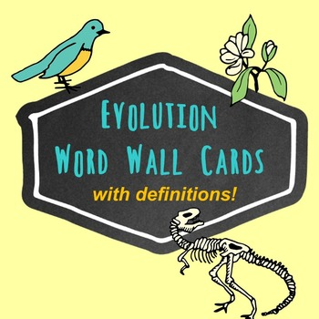 Evolution Word Wall Cards