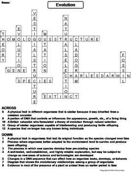 Evolution Worksheet/ Crossword Puzzle