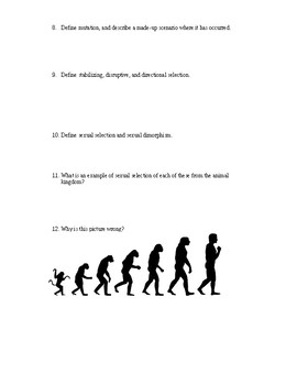 Evolution Worksheets