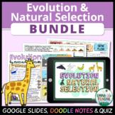 Evolution and Natural Selection Bundle - Digital Learning