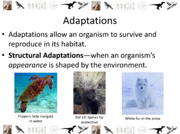 Evolution and Natural Selection Powerpoint Slide Show
