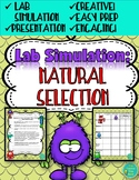 Survival of the Fittest Lab Simulation | Evolution Notebook