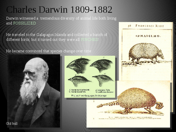 Evolution and Population Genetics
